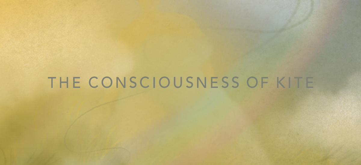 【エッセイ】 The consciousness of kite